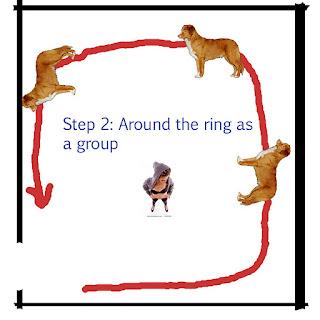 Хендлинг, всё о нём! Ring_2